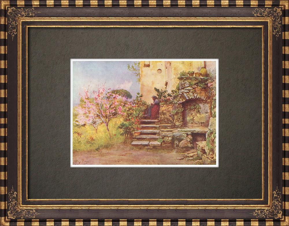 Antique Prints & Drawings   Garden at Monte San Giuliano - Trapani - Sicily (Italy)   Print   1911