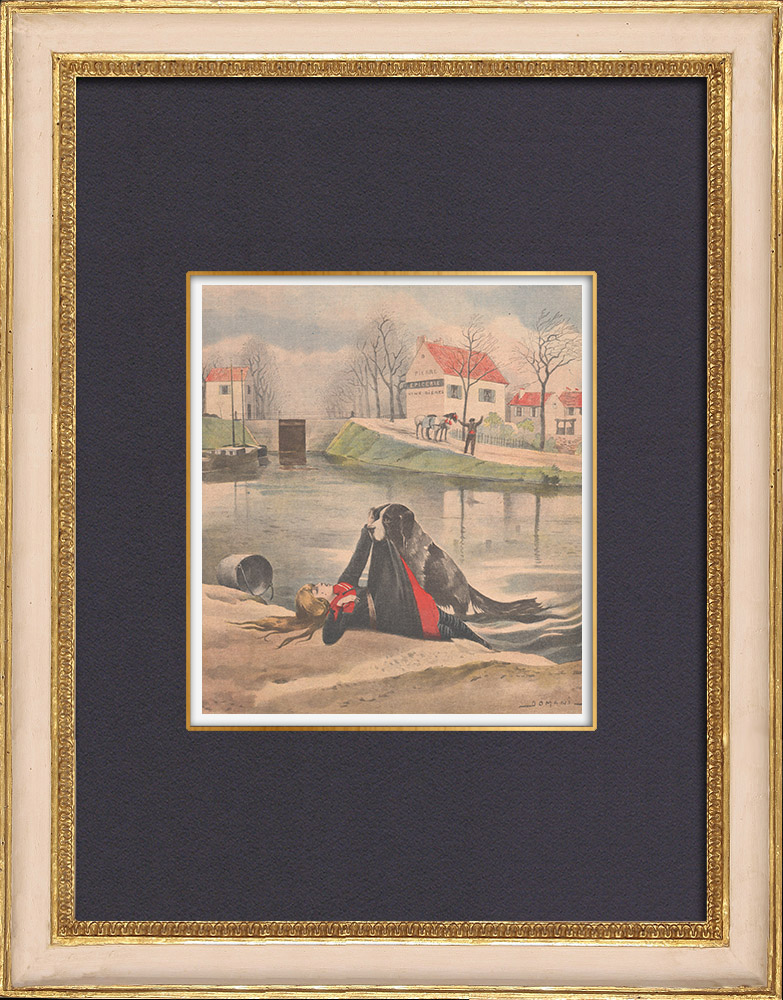 Antique Prints & Drawings | A dog rescues a girl fallen in a canal in Saint-Dizier - France - 1902 | Wood engraving | 1902