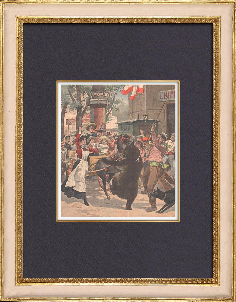 Gravures Anciennes & Dessins | Un ours attaque une charrette d'enfants à Valenciennes - Nord - France - 1902 | Gravure sur bois | 1902