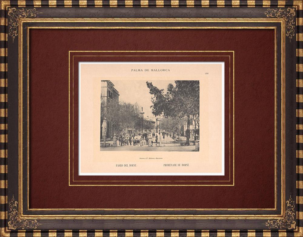 Antique Prints & Drawings | Paseo del Born - Palma de Mallorca - Balearic Islands (Spain) | Phototypie | 1899