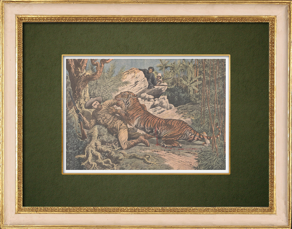 Antique Prints & Drawings   A man wounded by a tiger in a hunt in Indochina - 1907   Wood engraving   1907