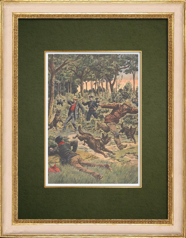 Stampe Antiche & Disegni | Unità cinofila al Bois de Boulogne - Parigi - 1907 | Incisione xilografica | 1907
