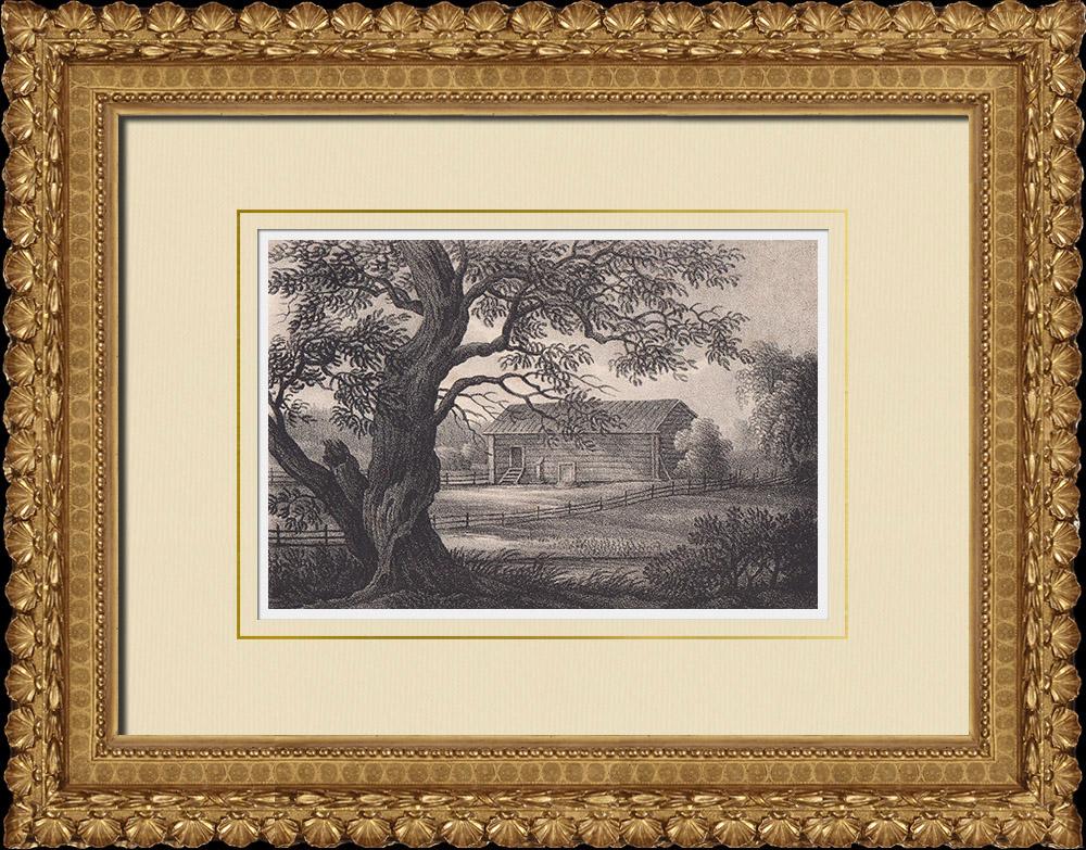 Antique Prints & Drawings | Mansion Rankhyttan - Barn - Falu - Dalarna (Sweden) | Lithography | 1840