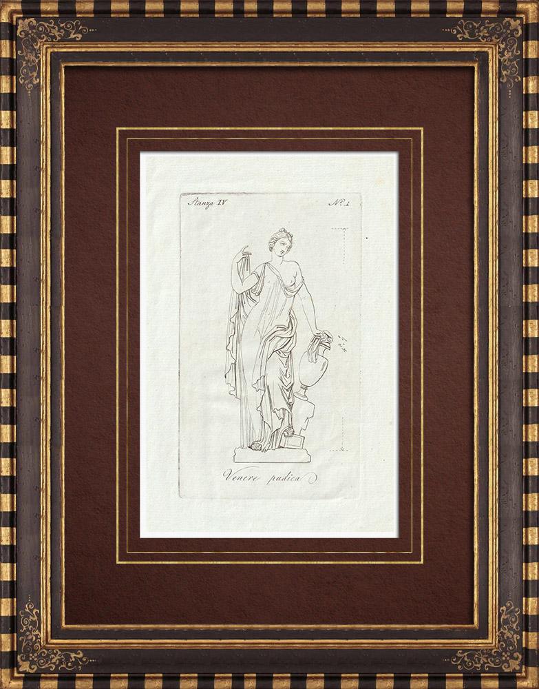 Antique Prints & Drawings | Sculpture of Venus - Galleria Borghese - Rome | Copper engraving | 1796