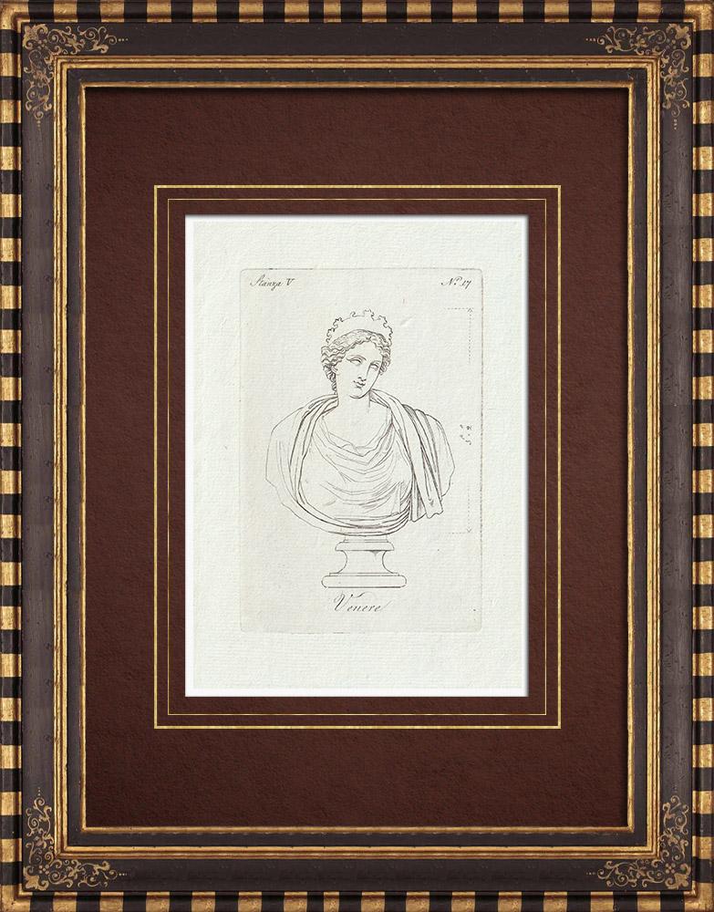 Stampe Antiche & Disegni | Busto di Venere - Galleria Borghese - Roma | Incisione su rame | 1796