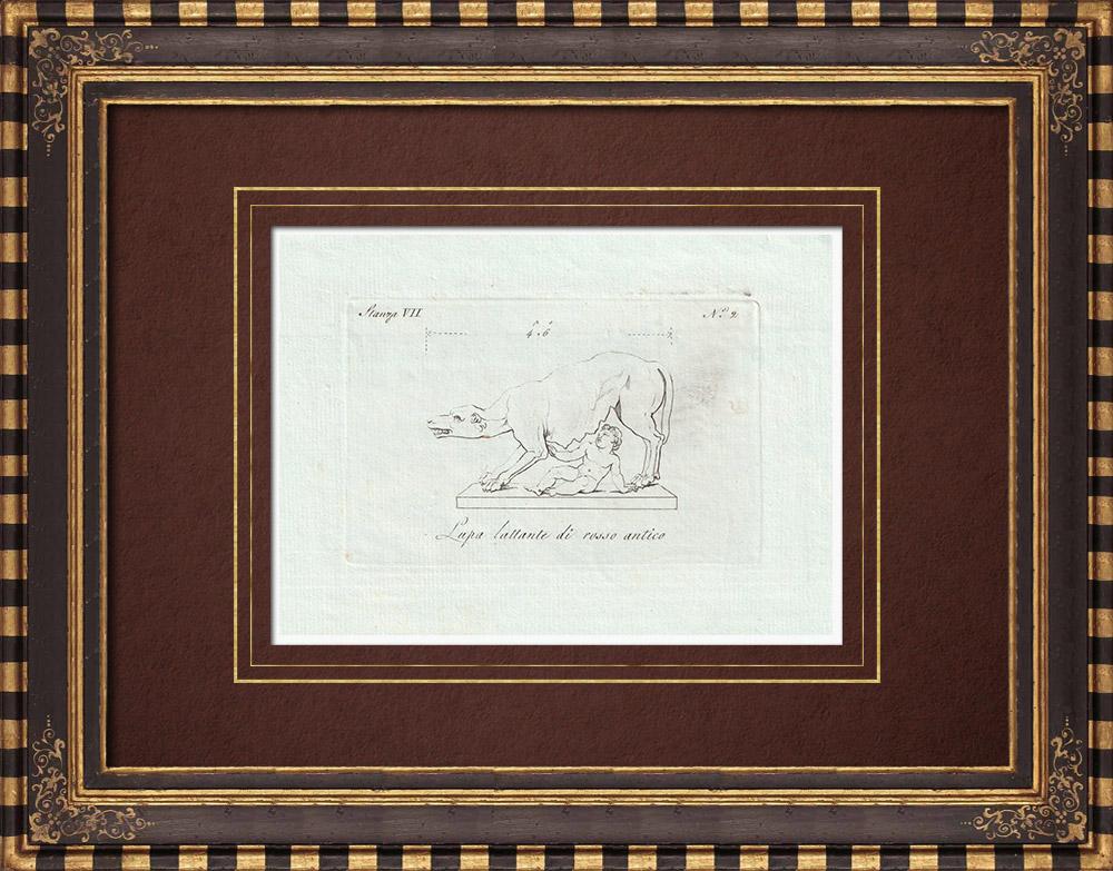 Stampe Antiche & Disegni | Lupa allante di rosso antico - Galleria Borghese - Roma | Incisione su rame | 1796