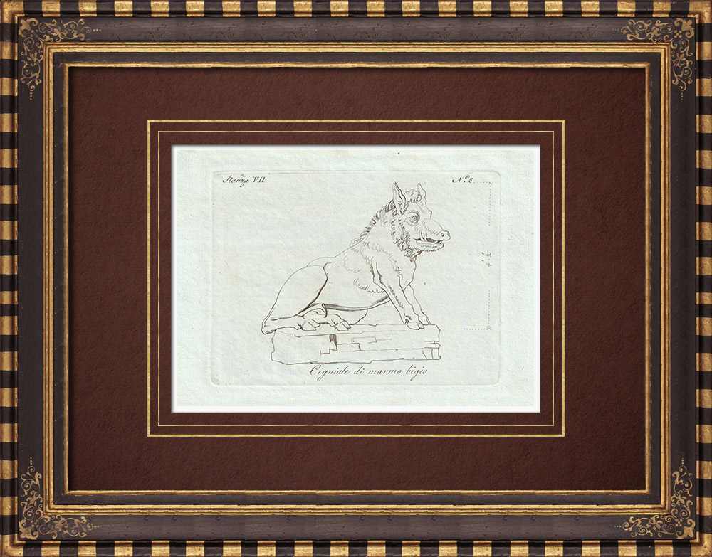 Antique Prints & Drawings | Gray marble wild boar - Galleria Borghese - Rome | Copper engraving | 1796