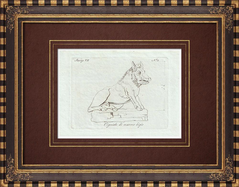 Stampe Antiche & Disegni | Cinghiale del marmo bigio - Galleria Borghese - Roma | Incisione su rame | 1796