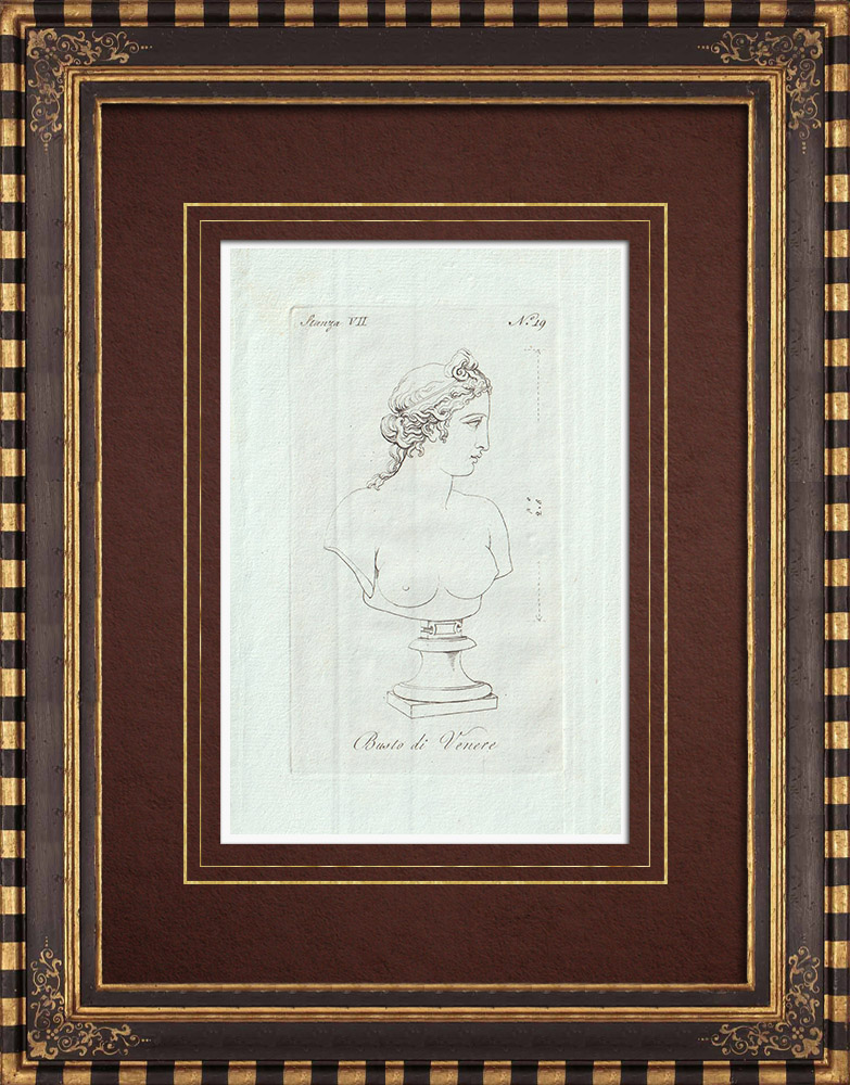 Antique Prints & Drawings | Bust of venus - Galleria Borghese - Rome | Copper engraving | 1796