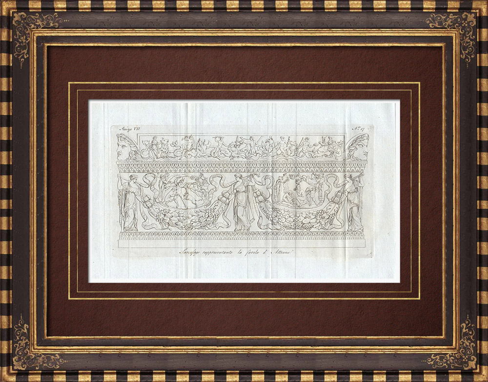 Antique Prints & Drawings | Sarcophagus - Actaeon's fable - Galleria Borghese - Rome | Copper engraving | 1796