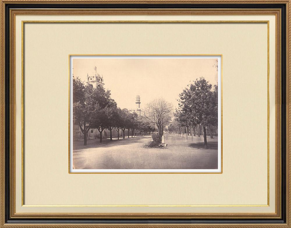 Stampe Antiche & Disegni | Veduta di Genova - Parco cittadino - Liguria (Italia) | Fotografia | 1870