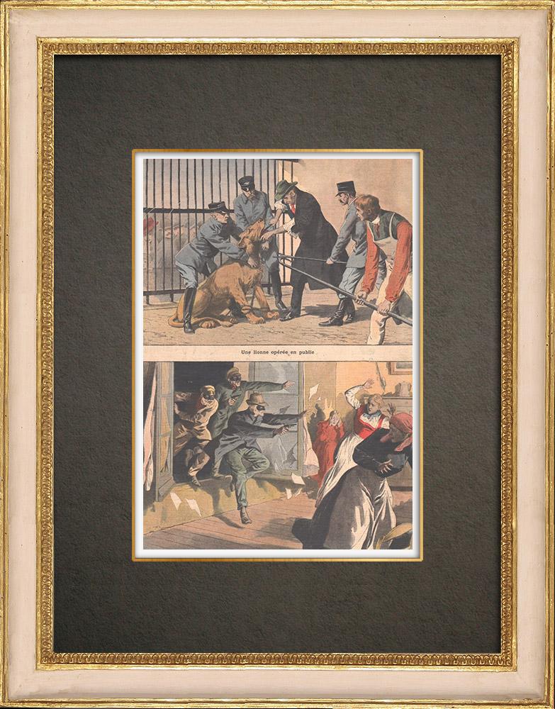 Stampe Antiche & Disegni | Una leonessa salvata da un guardiano - Banditi mascherati attaccano una fattoria - 1908 | Incisione xilografica | 1908