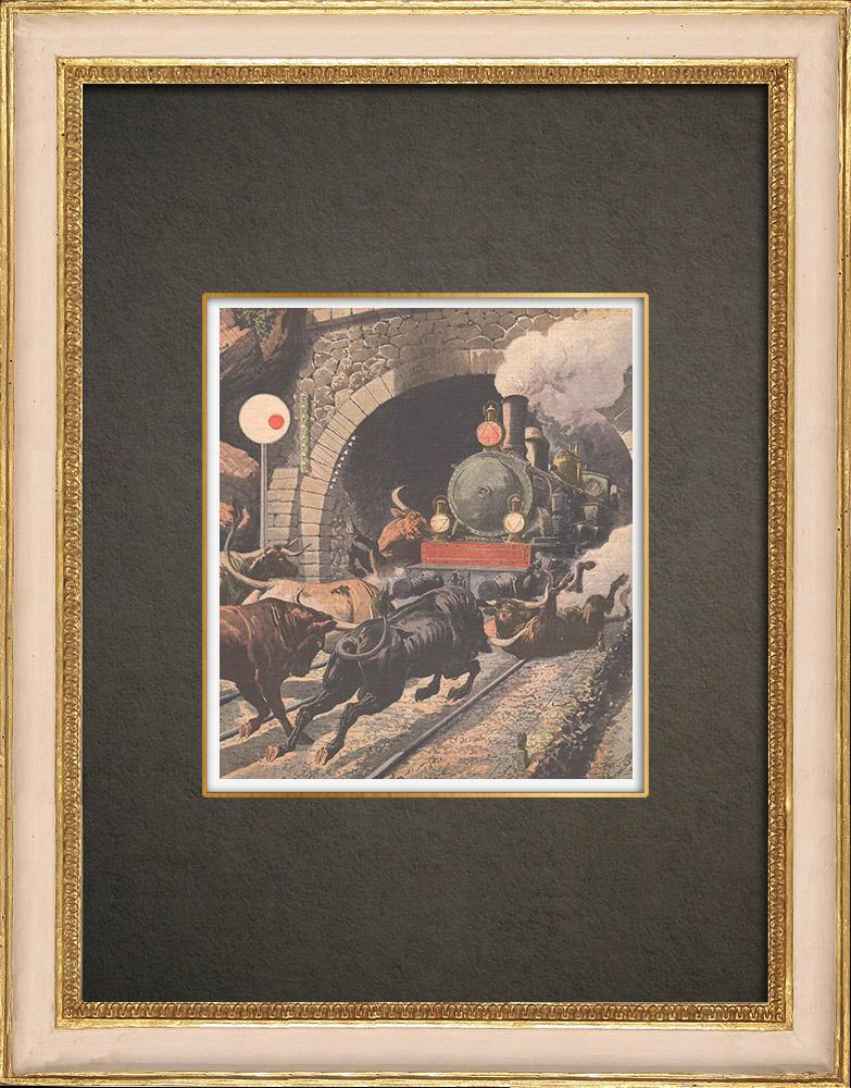 Stampe Antiche & Disegni | Un treno incontra sette tori in il tunnel Cercedilla - Spagna - 1908 | Incisione xilografica | 1908