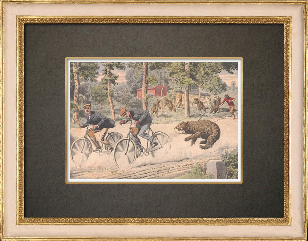 Stampe Antiche & Disegni | Due ciclisti inseguiti da un orso in Corrèze - Francia - 1908 | Incisione xilografica | 1908