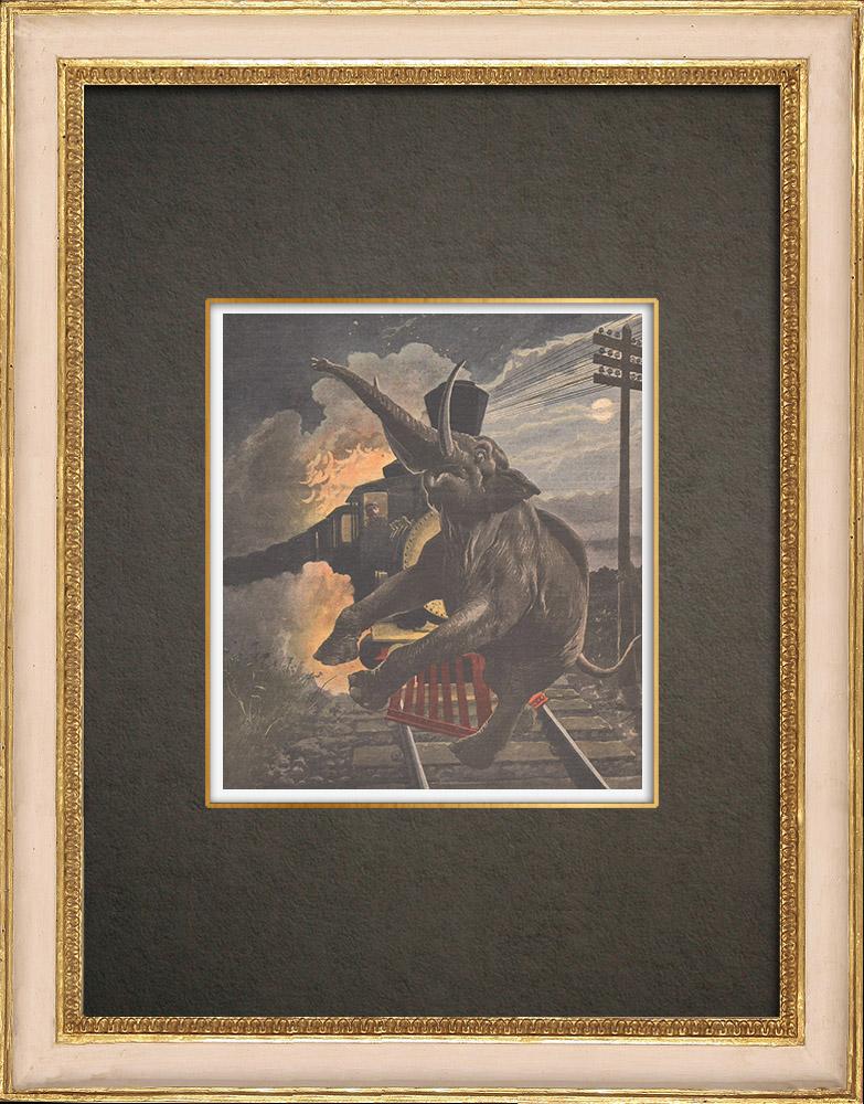 Stampe Antiche & Disegni | Una locomotiva colpisce un elefante nella notte - Siam | Incisione xilografica | 1908