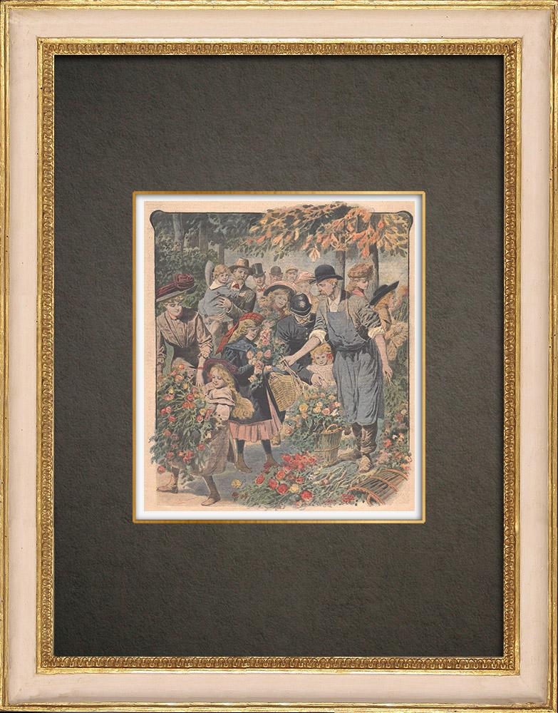Stampe Antiche & Disegni   Fiori dei parchi di Londra dati ai bambini - Inghilterra - 1908   Incisione xilografica   1908