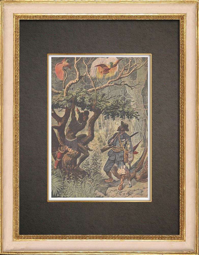 Stampe Antiche & Disegni | Caccia agli Uccelli del Paradiso in Nuova Guinea - 1908 | Incisione xilografica | 1908