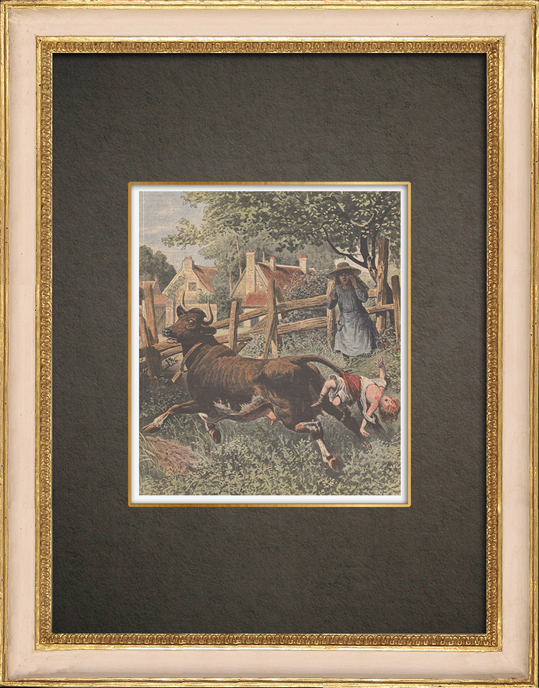 Antique Prints & Drawings | Cruelty of a little girl in a farm near Mamers - France - 1909 | Wood engraving | 1909