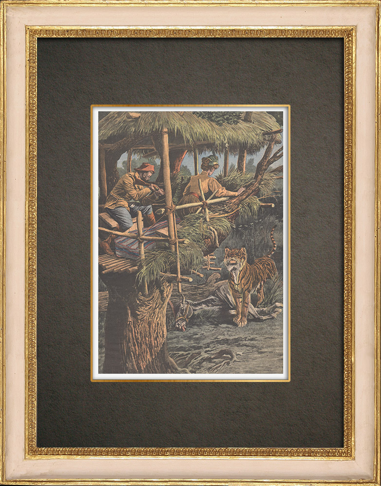 Antique Prints & Drawings   Two tiger hunters on the lookout in Annam - 1909   Wood engraving   1909