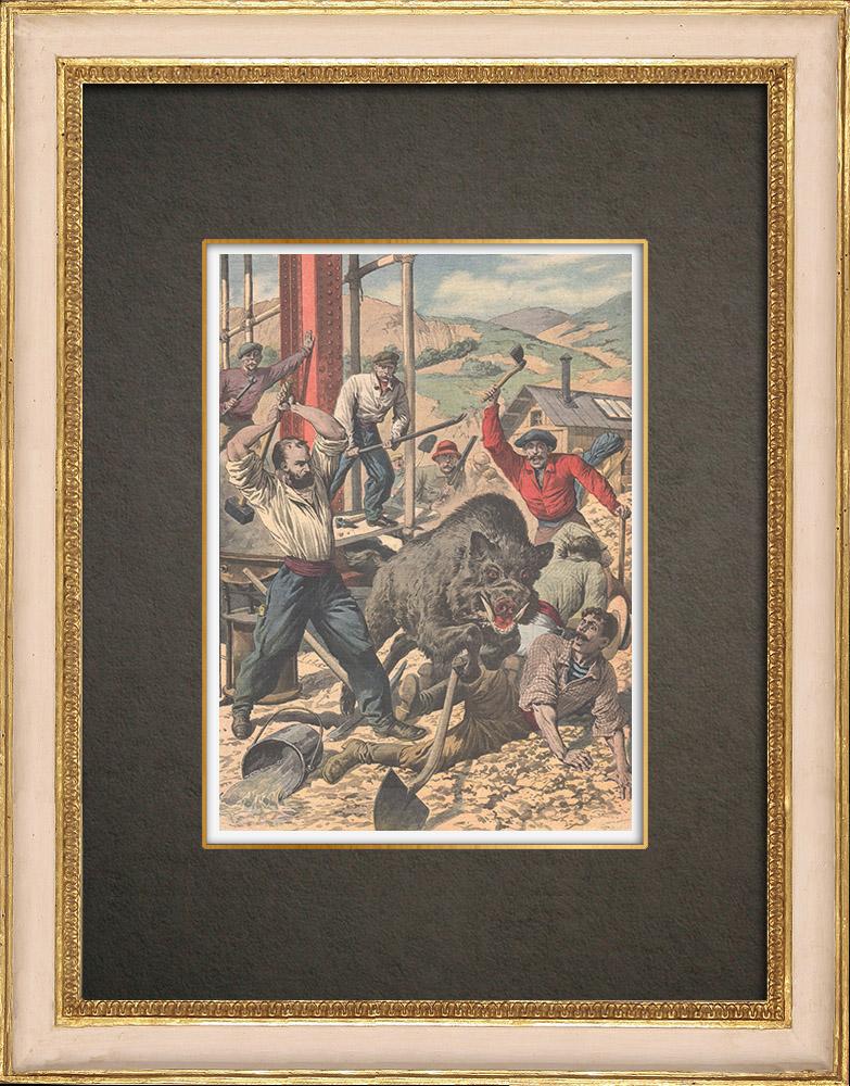 Stampe Antiche & Disegni | Caccia al cinghiale nella stazione di Neussargues - Francia - 1909 | Incisione xilografica | 1909