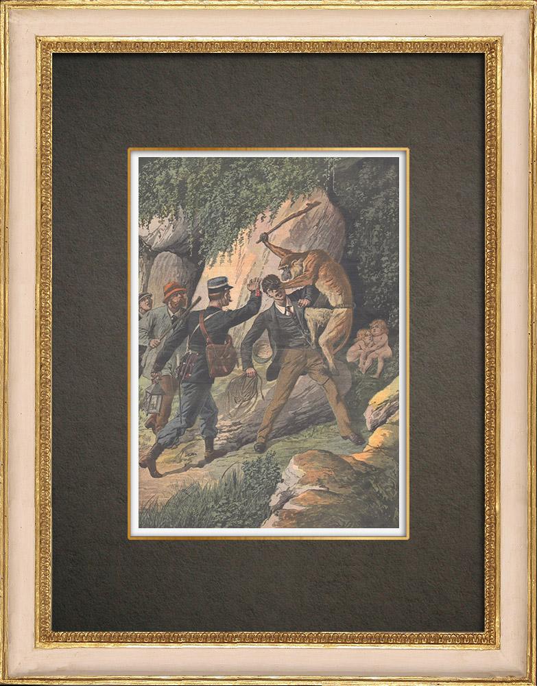Antika Tryck & Ritningar | Två små barn som stals av en apa i Herserange - Frankrike - 1910 | Träsnitt | 1910