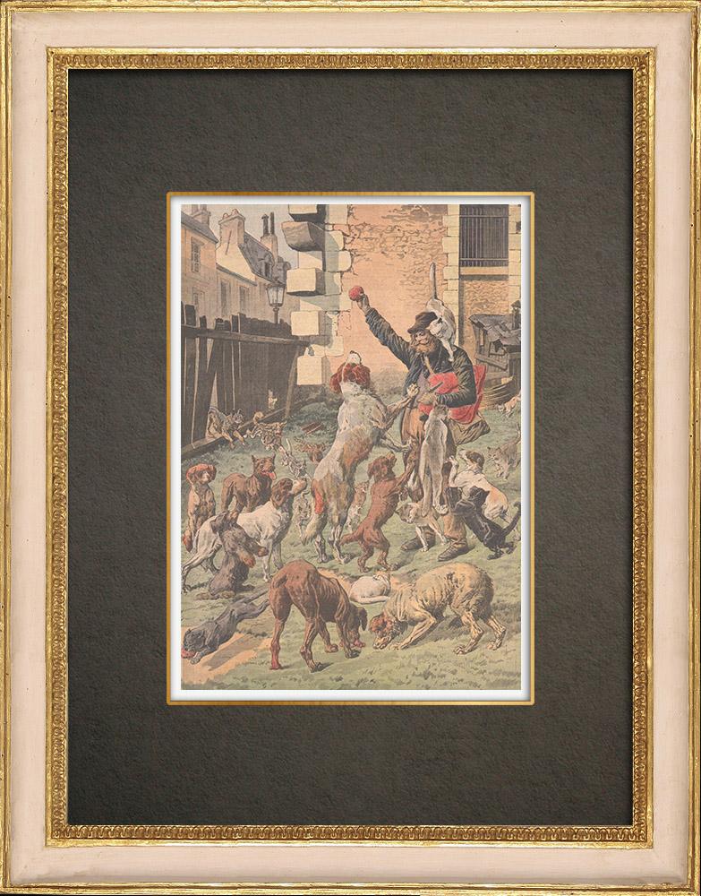 Antika Tryck & Ritningar | En vän till djur i Paris - 1910 | Träsnitt | 1910