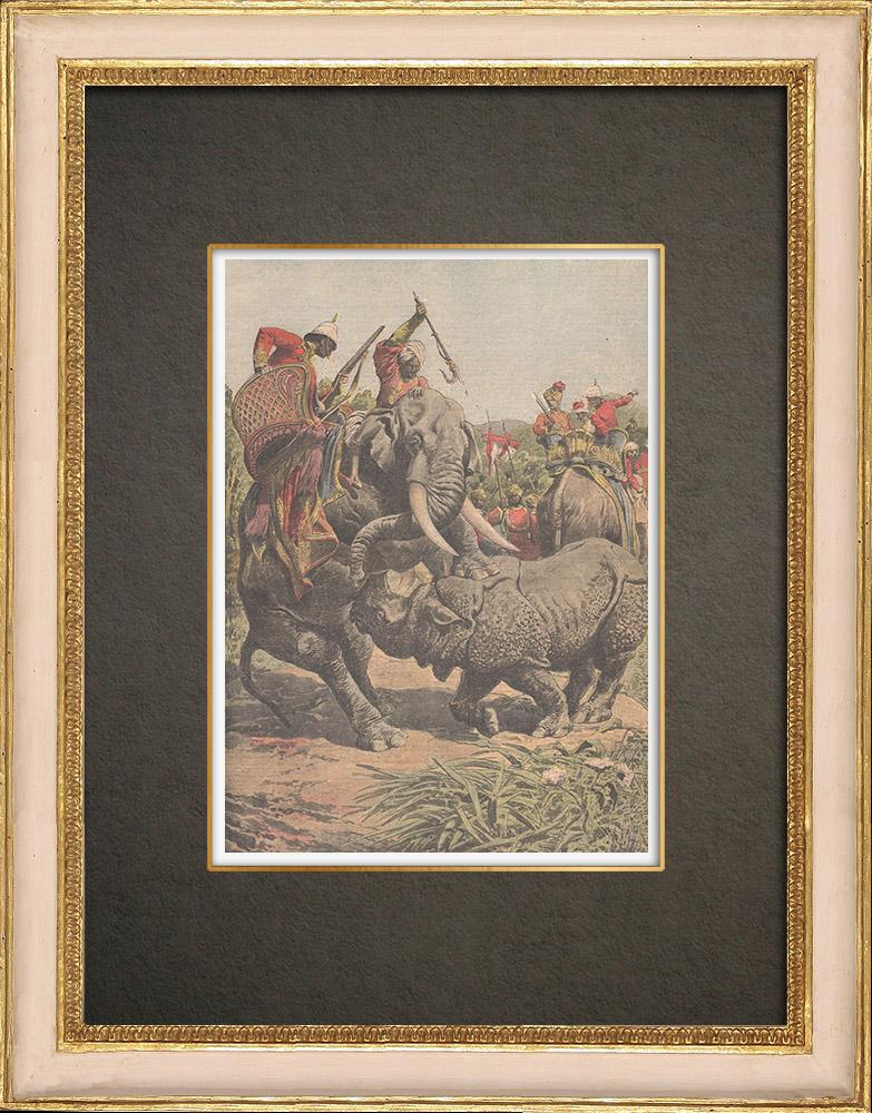 Antique Print & Etching | Nashorn gegen Elefanten (Indien) - 1910 | Holzstich | 1910