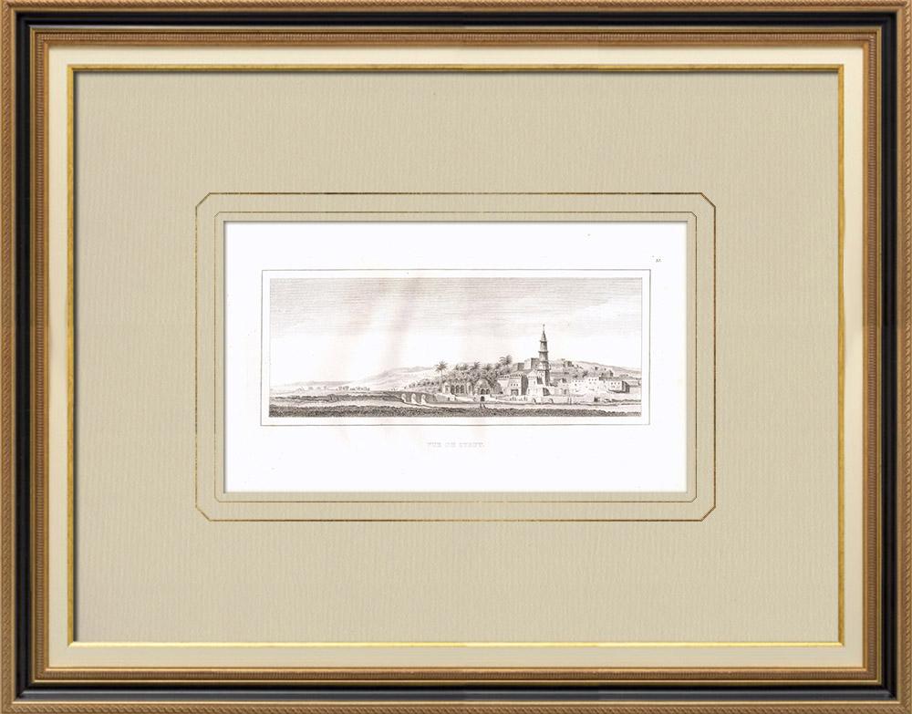 Antique Print & Etching | Ansicht von Assiout (Ägypten) | Kupferstich | 1830