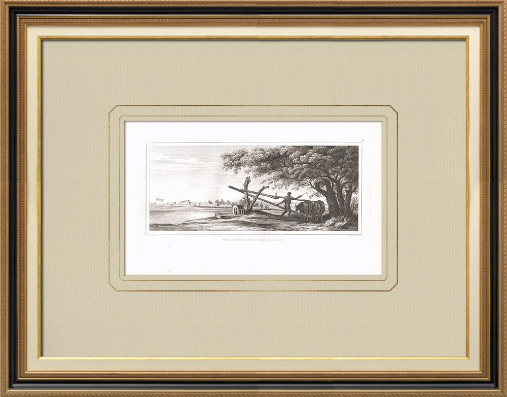 Antique Prints & Drawings | Irrigation machine - Sakieh (Egypt) | Copper engraving | 1830