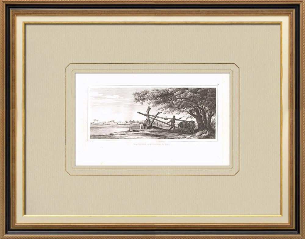 Grabados & Dibujos Antiguos | Máquina de riego - Sakia (Egipto) | Grabado calcográfico | 1830