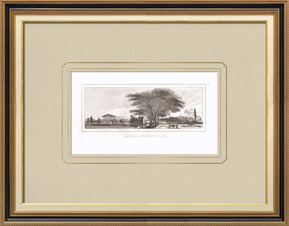 Antique Prints & Drawings | Gardens of the Egyptian Scientific Institute in Cairo (Egypt) | Copper engraving | 1830