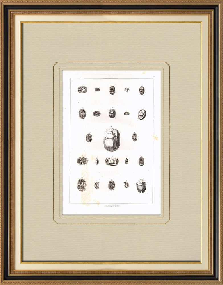 Antique Prints & Drawings | The scarab beetle, sacred animal in ancient Egypt (Egypt) | Copper engraving | 1830