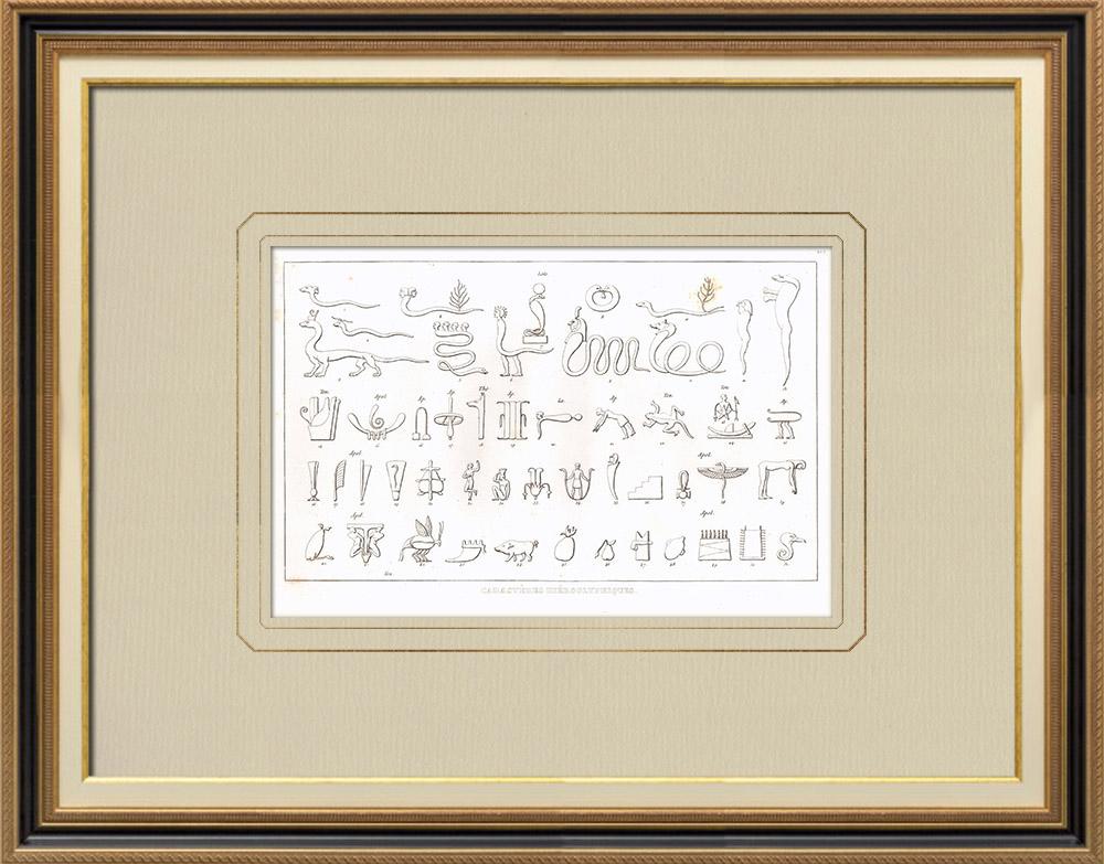Gravuras Antigas & Desenhos | Hieróglifos (Egito) | Gravura em buril sobre cobre | 1830