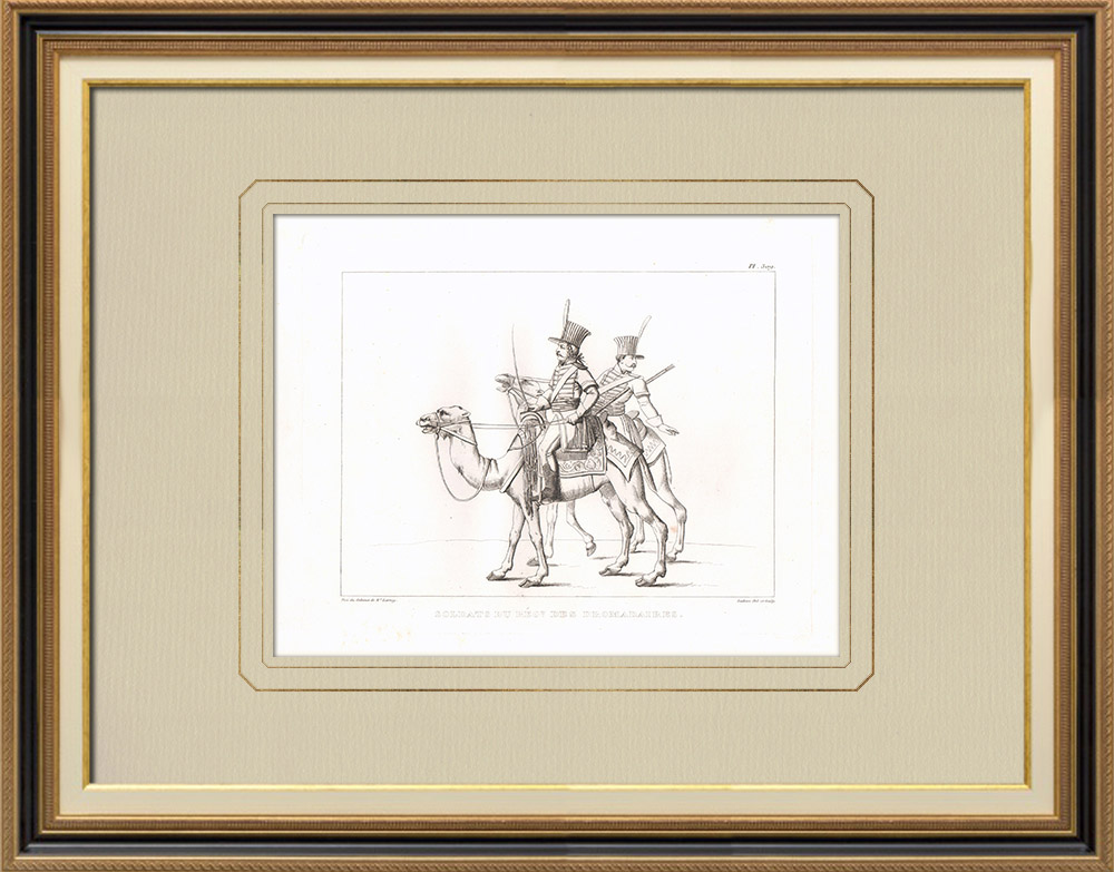 Gravuras Antigas & Desenhos | Soldados do Régiment de Dromadaires - Bonaparte - 1798 (Egito) | Gravura em buril sobre cobre | 1830