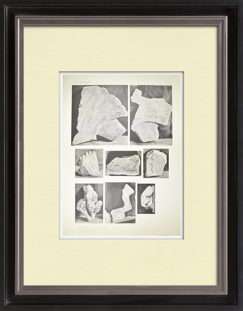 Gravures Anciennes & Dessins | Vue du Parthénon - Fronton ouest - Fragments - Ailes - Cheval (Grèce) | Héliogravure | 1912