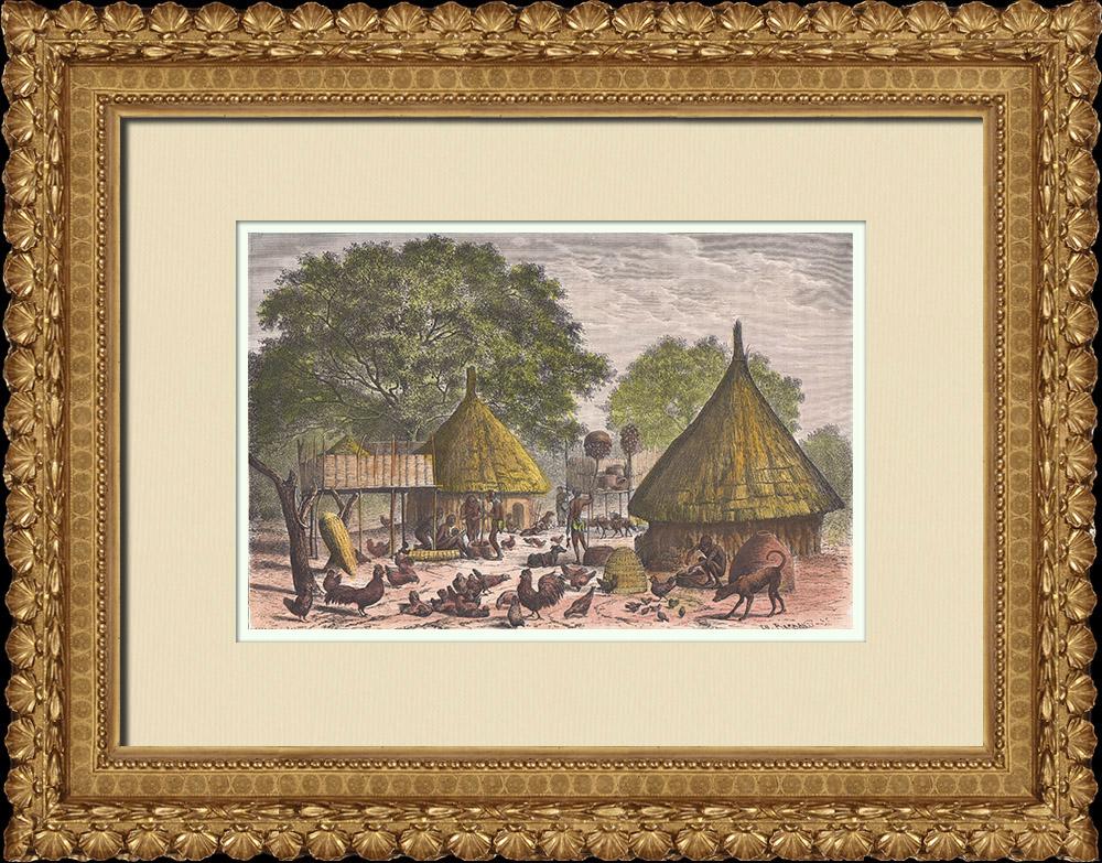 Gravures Anciennes & Dessins   Village du peuple Diour en hiver - Bahr al-Ghazal (Soudan du Sud)   Gravure sur bois   1874