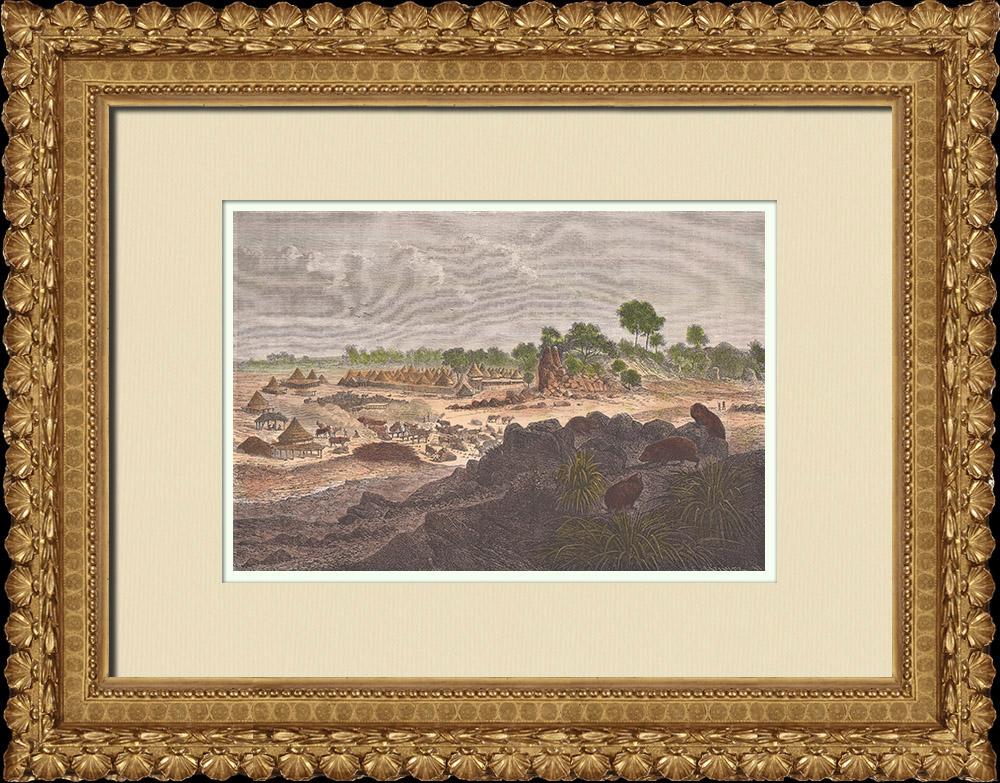 Gravures Anciennes & Dessins | Zériba Poncet - Mvolo (Soudan du Sud) | Gravure sur bois | 1874