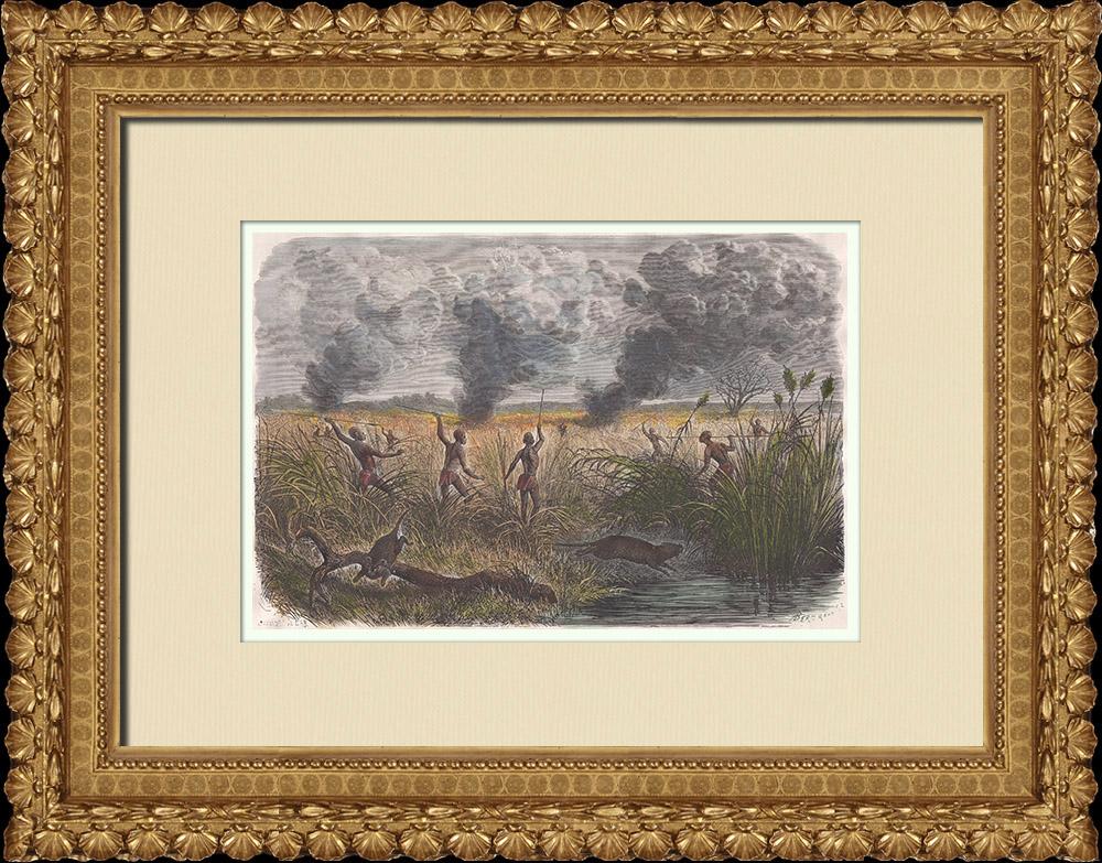 Gravures Anciennes & Dessins | Bongos - Chasse au Fahr-el-Boûss - Groupe ethnique au Soudan du Sud | Gravure sur bois | 1874